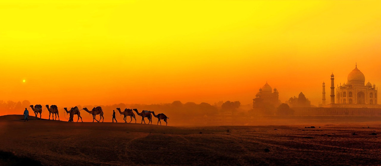 Incredible Palace Escape Holiday Offers at Taj Holidays - 16x7