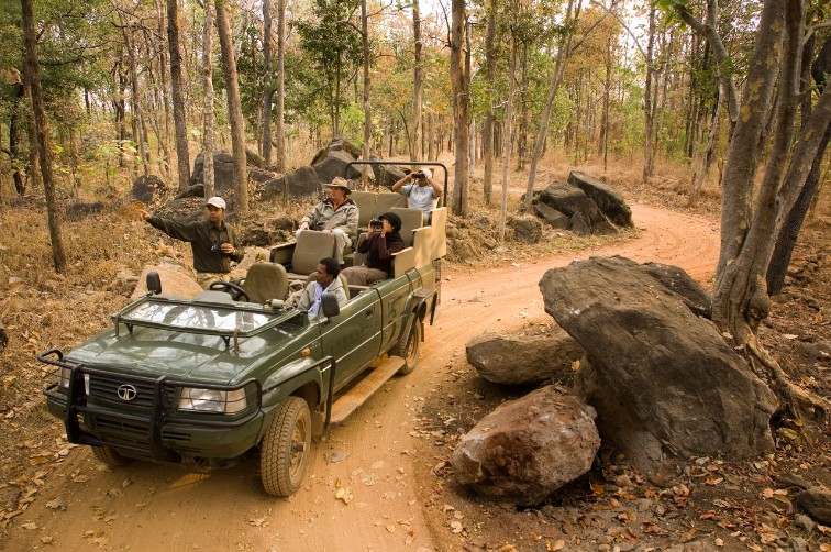 Safari Drives at Pench National Park