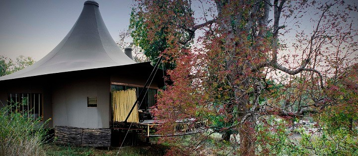 Explore Tented Suites at Banjaar Tola, Kanha National Park - A Taj Safari Lodge