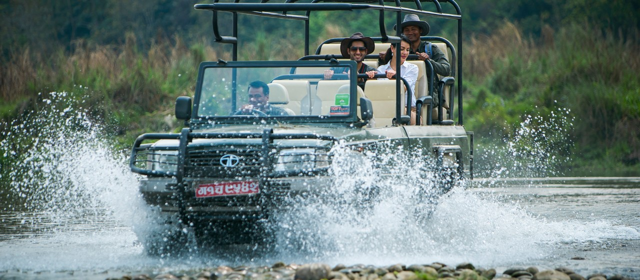Experience Wildlife Journey with Taj Safari