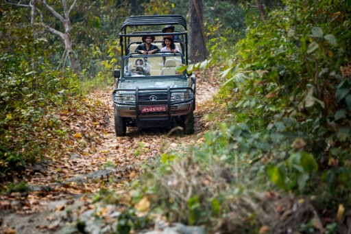 Safari Drives at Chitwan National Park 3x2