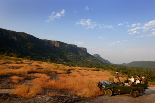 Safari Experience at Bandhavgarh