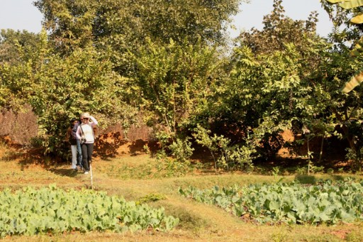 Organic Farms by Taj Safaris